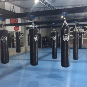 Punching Bags Online